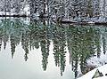 Green Reflections of White, Yosemite 5-20-15 (18969673406).jpg