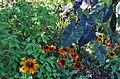 Green Spring Gardens in September (22802660341).jpg