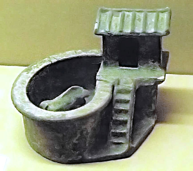 Model of a Pig Toilet