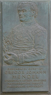 Johann Gregor Mendel - memorial plaque in Olomouc