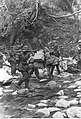 Grenadierzy pancerni SS podczas przeprawy przez górski strumień na froncie bałkańskim (2-566).jpg