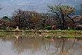 Groot Constantia - panoramio (9).jpg