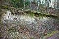 Grube Messel, Weltnaturerbe, weißer Sandstein, Deckschicht - panoramio.jpg
