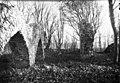 Gudhems klosterruin - KMB - 16000200156119.jpg