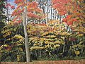 Guelph-colours-2009-small.jpg