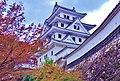 Gujohachiman Castle 郡上八幡城 - panoramio (2).jpg