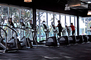 Gym Cardio Area Overlooking Greenery Category:...