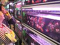 HK Aquarium Plaza Quarry Bay Goldfish customers.JPG