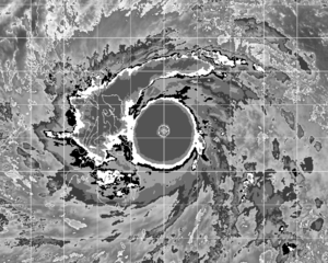 Dvorak technique - Dvorak enhancement imagery of Typhoon Haiyan at T8.0