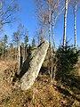 Hallabo solsten (RAÄ-nr Sörby 47-1) 7669.jpg