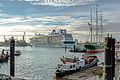 Hamburg Hafen Quantum of the Seas Dock 17 7229 Torsten Baetge.JPG