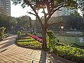 Hanging-Gardens-1.jpg