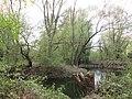 "Hannover-Döhren - Weg ""Döhrener Mühle"" - panoramio (2).jpg"