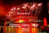 Happy New Year Steward.jpg