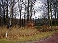 Harderwijk - Tonsel - Weisteeg - View ENE.jpg