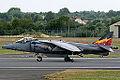 Harrier (5169290650).jpg