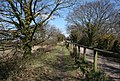 Hayling Billy Trail - geograph.org.uk - 1224068.jpg