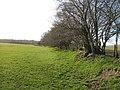 Hedgerow and path to Ysgubor y Cefn - geograph.org.uk - 749677.jpg