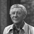 Herman Wigbold 3.png