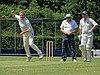 Hertfordshire County Cricket Club v Berkshire County Cricket Club at Radlett, Herts, England 030.jpg