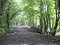 High Wycombe, Former railway line to Bourne End - geograph.org.uk - 925380.jpg