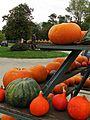 Hofladen im Herbst - panoramio.jpg