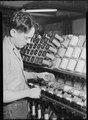 Holyoke, Massachusetts - Silk. William Skinner and Sons. Piecing. - NARA - 518308.tif