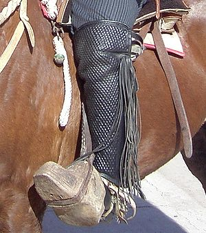 Gaiters - Over-the-knee gaiters worn by a Chilean rodeo rider
