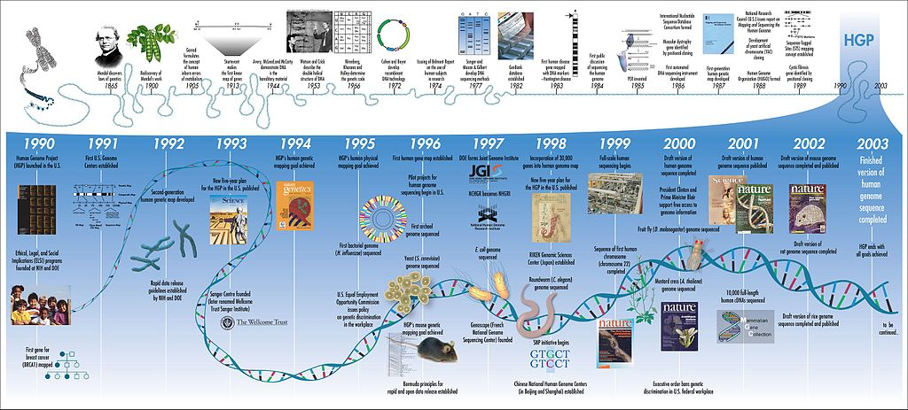 file human genome project timeline 26964377742 jpg wikimedia commons