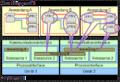 IEC 61499 Modelle.png