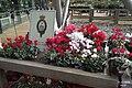 In the Savill Garden shop (22116858662).jpg