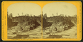 In the dalles of the St. Louis river, by Caswell & Davy 2.png