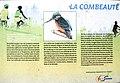 Informations sur la Combeauté. Fougerolles-le-Château.jpg