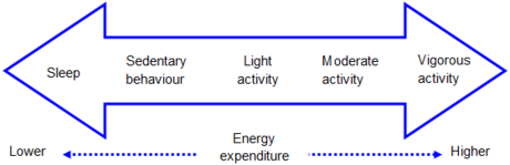 Physical Activity Wikipedia