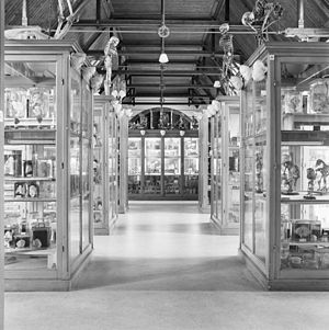 Zoological Museum Amsterdam - Zoological Museum in 1987