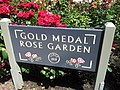 International Rose Test Garden, Portland, Oregon (2013) - 8.jpeg