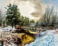Irishtown Nature Park Christmas (27441277109).jpg