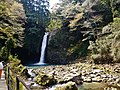 Izu Joren-Wasserfall 02.jpg