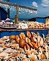 Jaffna Nature.jpg