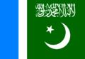 Jamaat-e-Islami Pakistan flag.PNG
