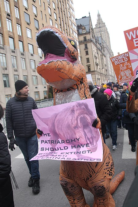 January 2019 Women's Alliance march in NYC (31864505297).jpg