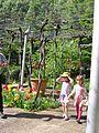 Jardin Treille Villette Mai 2016 034.JPG