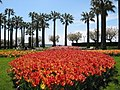 Jardins de la croisette, Cannes.jpg