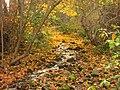 John A. Finch Arboretum - IMG 6909.JPG