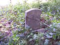 Jones-Barton Cemetery Memphis TN 4.jpg