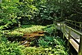 Kakitagawa Park Wakima Springs 2.jpg