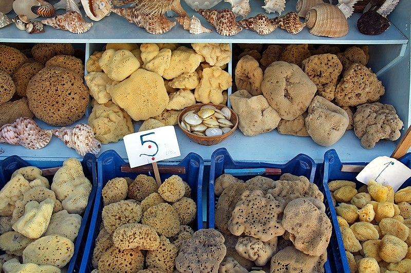 File:Kalymnos sponges 1.jpg