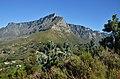 Kapské město, Stolová hora, Table Mountain - Jihoafrická republika - panoramio (2).jpg