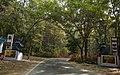 Kaptai-National-Park-2.jpg