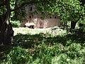 Karşıbahçeler, 23500 Palu-Elâzığ, Turkey - panoramio (10).jpg